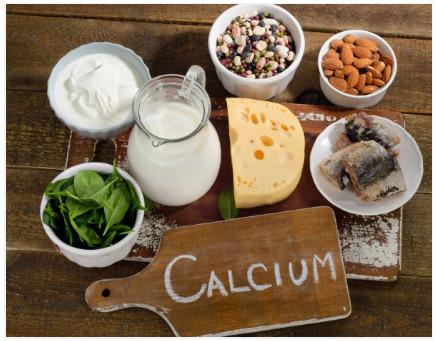 foods that contain calcium